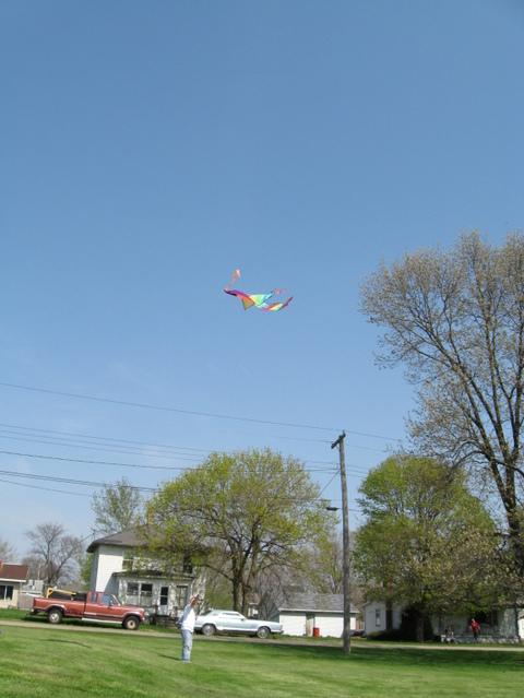 Kite_flying_012